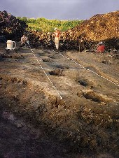 View of Brennan Trackway during excavatin in 1992 (click to enlarge).